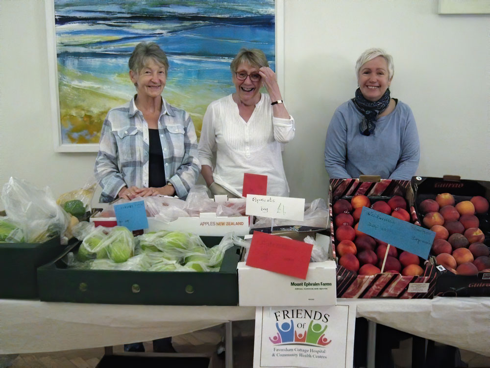 Read more about the article Summer Fair at the Alexander Centre